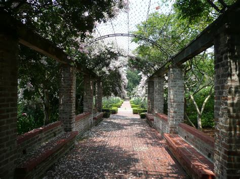 New Orleans Botanical Garden Wedding Places To See And Rv Parks Near New Orleans Louisiana