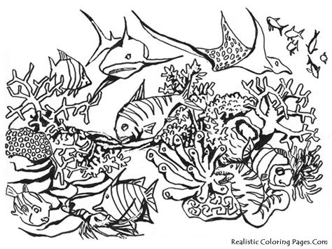 fish habitat coloring pages fish and habitat coloring sheet gulfmik 16457c630c44