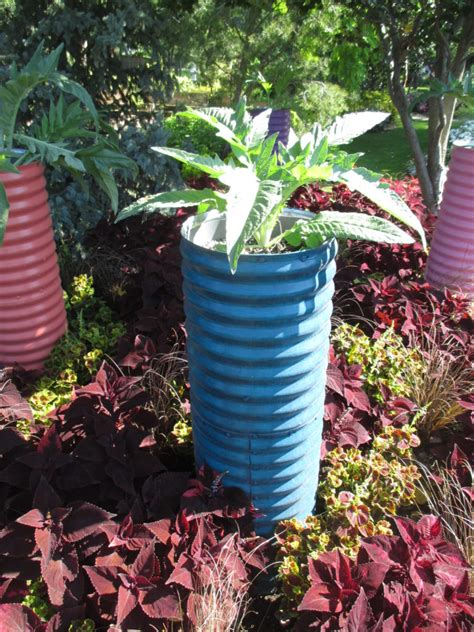 Culvert Pipe Planters by The Caladium Collection Rotary Botanical Gardens