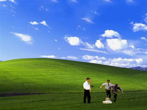 Office Space Windows Xp Background The 13 Best Takes On The Windows Xp Bliss Wallpaper