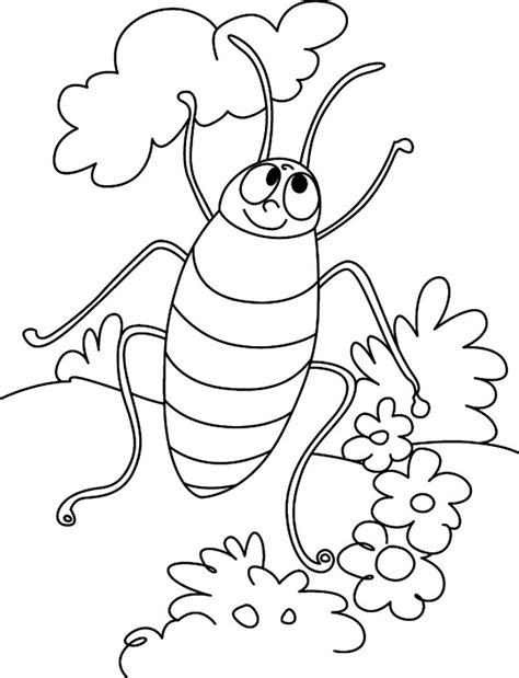 free printable cockroach coloring pages for kids