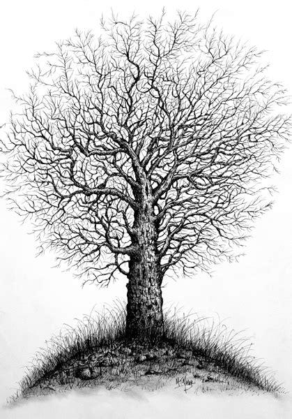 Sketsa Gambar Pohon | Gambar Pemandangan