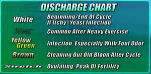 what color should discharge be bacterial vaginosis jeffreysterlingmd