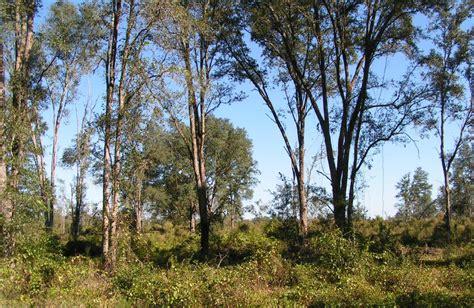 Putnam County Property Records Sold Orange In Putnam County Florida Saunders Real Estate