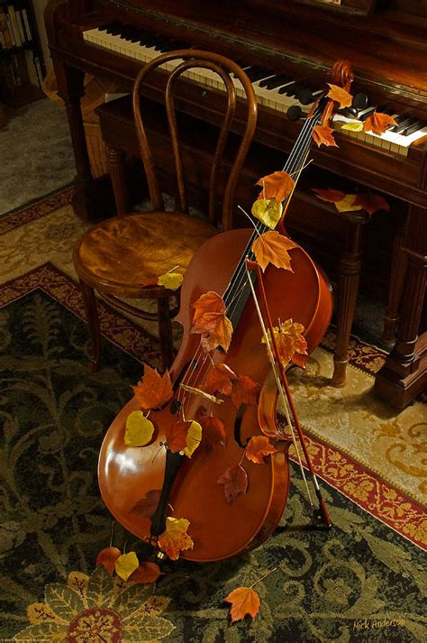 Musical Duvet Covers Cello Autumn 1 Photograph By Mick Anderson