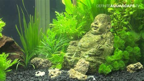 Zen Decorating aquascaping aquarium ideas from aquatics live 2011 part