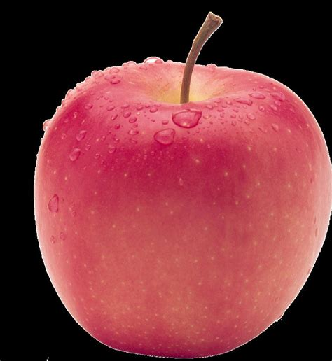 apple fuji china fuji apple china apple fuji apple