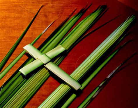 a concord pastor comments word for the weekend palm sunday