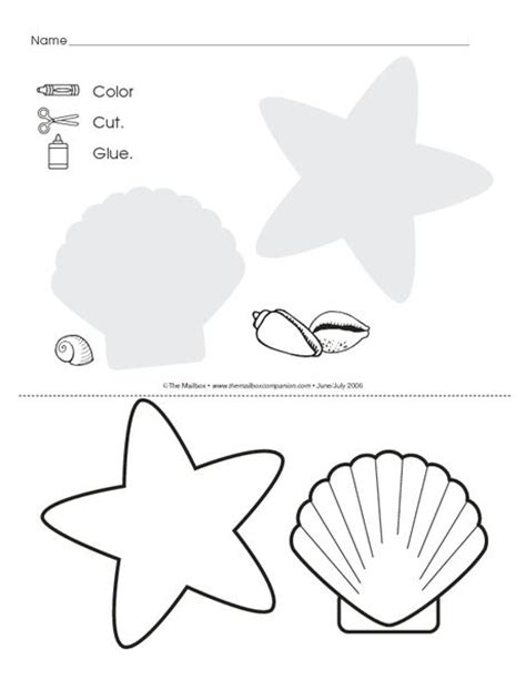 seashell coloring pages preschool 1140 best images about functional skills preschool on