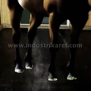 Alas Kandang Kuda karpet karet ternak kuda