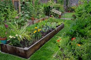 are backyard gardens a weapon against climate change