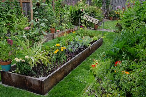 Backyard Nursery by Are Backyard Gardens A Weapon Against Climate Change