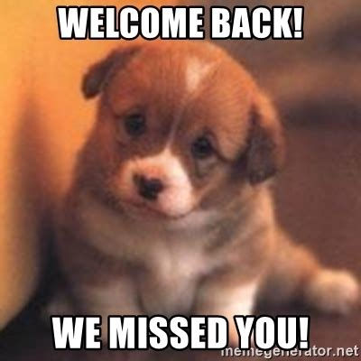 Welcome Back Meme - welcome back puppy meme back best of the funny meme