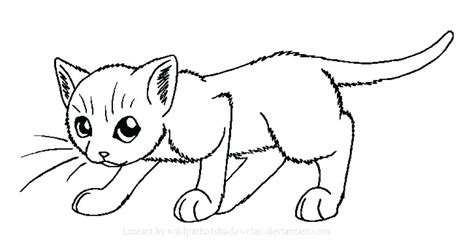 Picture Of A Cat To Color by Printable Cat Pictures To Color And Cat Coloring Pages