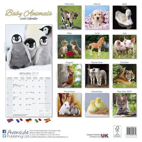 Calendar Animals Baby Animals Calendar 2018 30125 18 Wildlife Animals