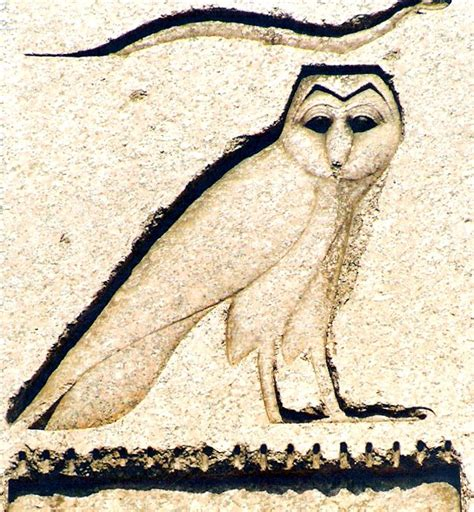 egyptian owl google search next tattoo maybe