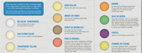 what color is healthy urine your urine color and your health health nigeria