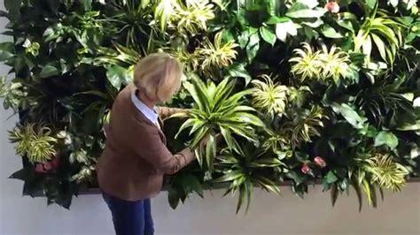 Pflanzenbild Selber Machen by Eine Gr 252 Ne Wand In Wenigen Minuten