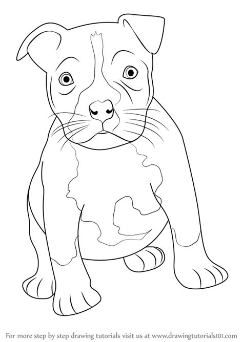 how to a pitbull puppy learn how to draw a pitbull puppy other animals step by step drawing tutorials