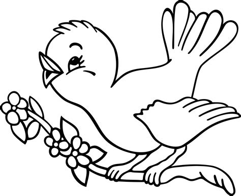 coloring pages of birds to print bird coloring pages clipart