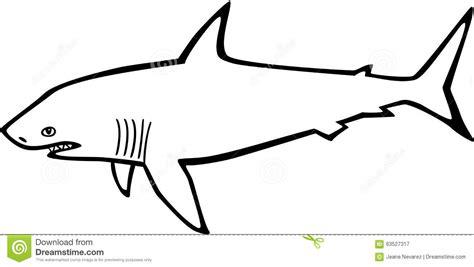 shark stock vector image 63527317