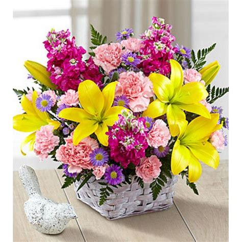 Send Birthday Flowers by 18 Best Send Birthday Flowers To Canada Images On