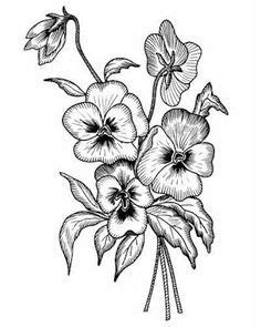 black and grey violet tattoo 25 best ideas about pansy tattoo on pinterest violet
