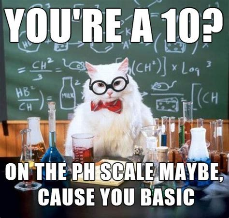 Chemistry Jokes Meme - chemistry cat memes that are absolutely meowgnificent