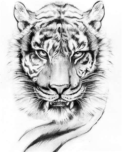 lion tattoo drawing ceesirart draw drawing tattooart tattooartist