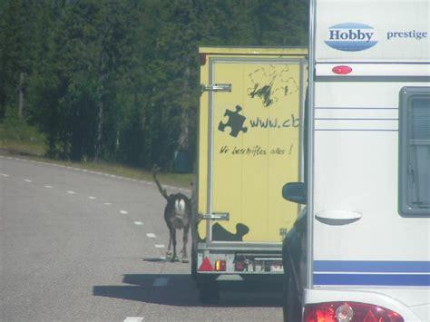 Fernsehen Im Auto Während Der Fahrt by Jens Blatter Spendenmarathon 2018