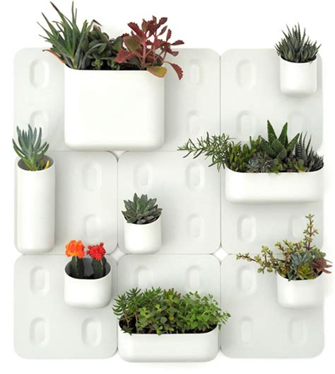 modular vertical garden brings green  urban walls