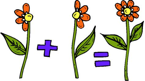 imagenes matematicas de fracciones el mundo de las fracciones