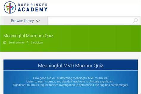 murmur in puppies grade 2 boehringer launches mvd murmur quiz vetsurgeon news news vetsurgeon org