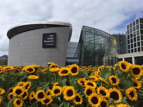museum amsterdam van gogh van gogh populairste museum onder toeristen museumactueel