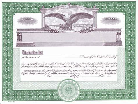 blank stock certificates free printable documents