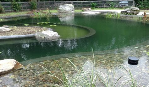 bionova natural pools poolfyi