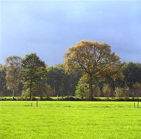Landscape Genre Definition Wim Velzen Photography Webarticles What Is Landscape