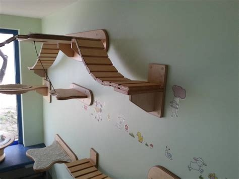 cat room cozy cat room design icreatived
