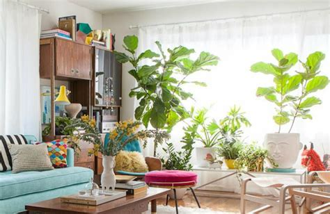 room with plants 10 cheerful living room ideas with plants covet edition