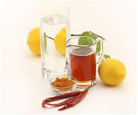 Detox Lemon Diet Cara by Master Cleanse Diet Tips 171 Lemonade Diet
