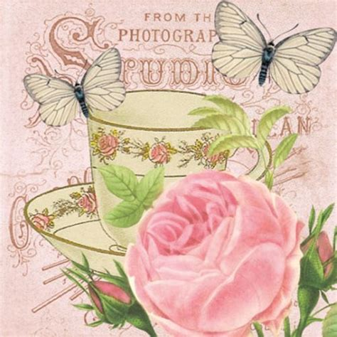 Talenan Decoupage Shabby Chic 3 20 paper napkins matinee decoration butterfly