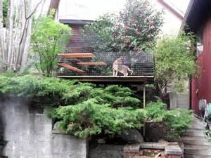 Outdoor Cat Enclosures » New Home Design