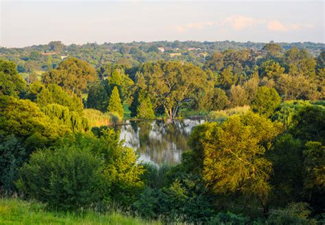 Beautiful City Park Botanical Gardens #6: 1.jpg