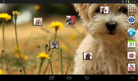 dogs barking sounds barking sounds apk for android aptoide