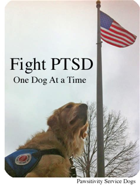therapy dogs for ptsd ptsd