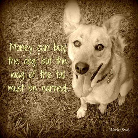 quote about dogs sweet quotes about dogs quotesgram