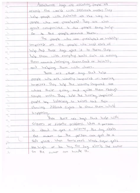 School Safety Essay by Informative Essay Sles For