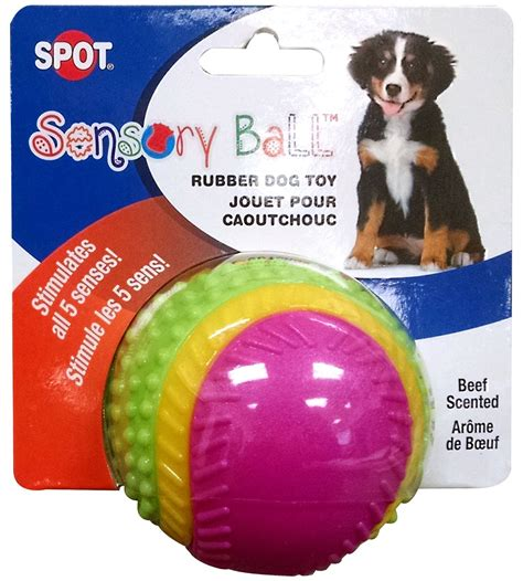 toys for blind dogs ethical pets sensory review blind toys