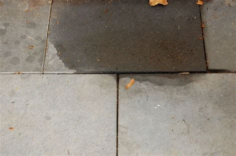 how to clean grease patio pavers should i seal my pavers