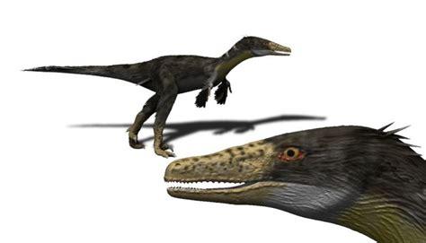 austroraptor cabazai wikipedia la enciclopedia libre
